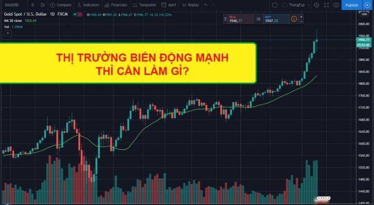 thi truong bien dong manh thi can lam gi